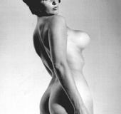 Curvy vintage girls showing their great round ass…