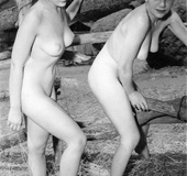 Several very sexy vintage girls posing nude in the…