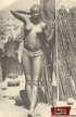 Sexual vintage pictures of several exposed ethnic…