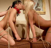 Two very hot babes in magnificent maledom action