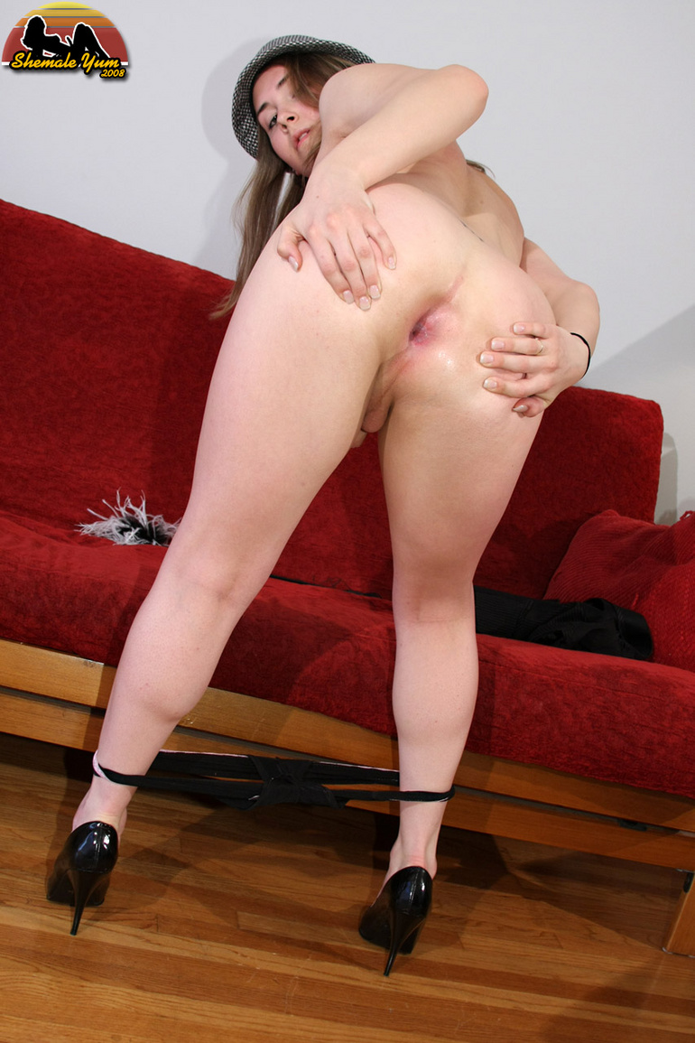 HQ Photo Porno Tranny harley