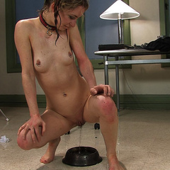 Puppy Girl Calico pissing herself - Pee pee - XXX Dessert - Picture 11