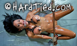 Hardtied