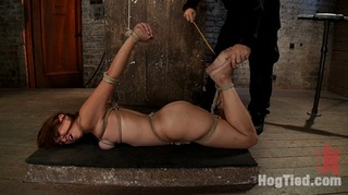 part august hogtied live